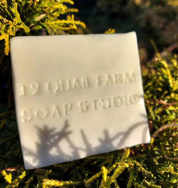 Donkey Milk Soap